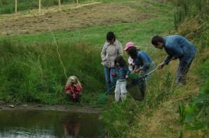 activite-nature-faune-aquatique-eco-domaine-etrillet