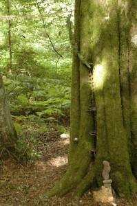 landart-parcours-nature-eco-domaine-etrillet