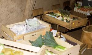 panier-legumes-echoppe-eco-domaine-etrillet